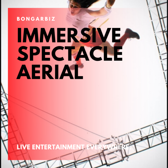 Immersive aerial entertainment events